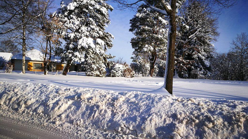 Múnich nieve