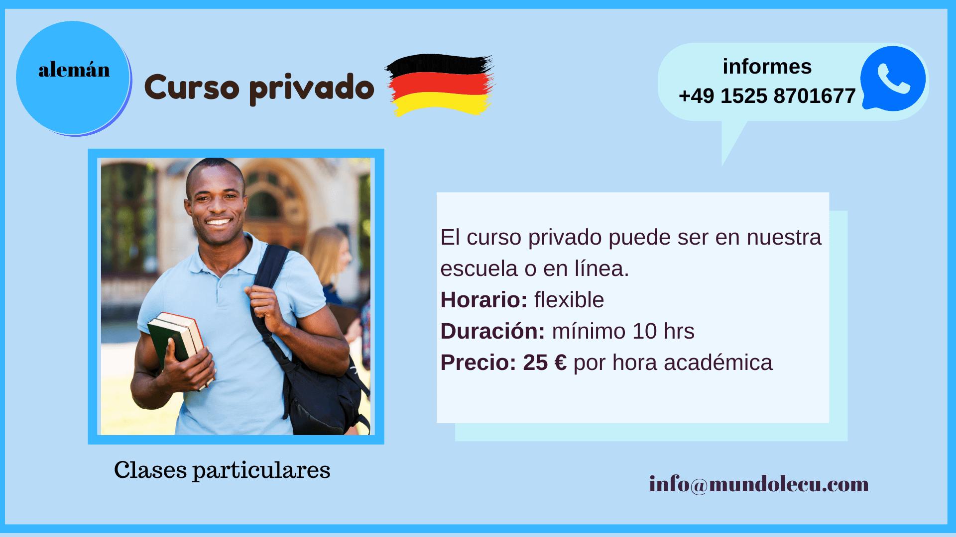 curso de aleman privado